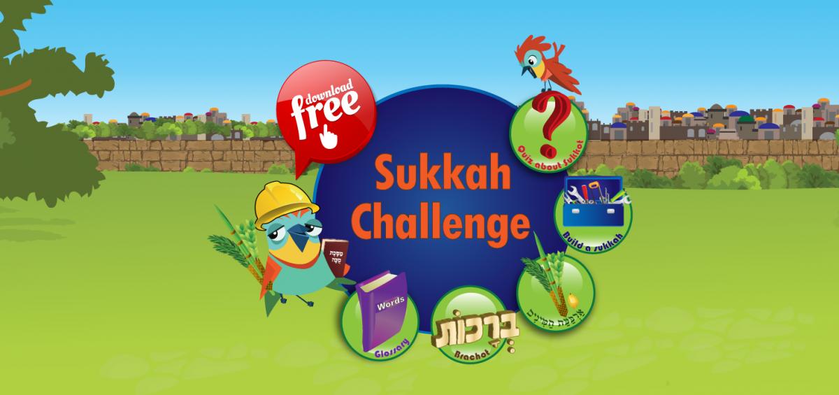 sukkah_challenge_banner